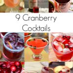 Tis the Season – 9 Cranberry Cocktails Recipes