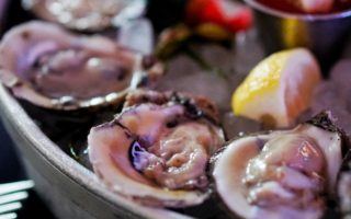 Best Places for Oysters in Phoenix and Where to Eat for National Oyster Day