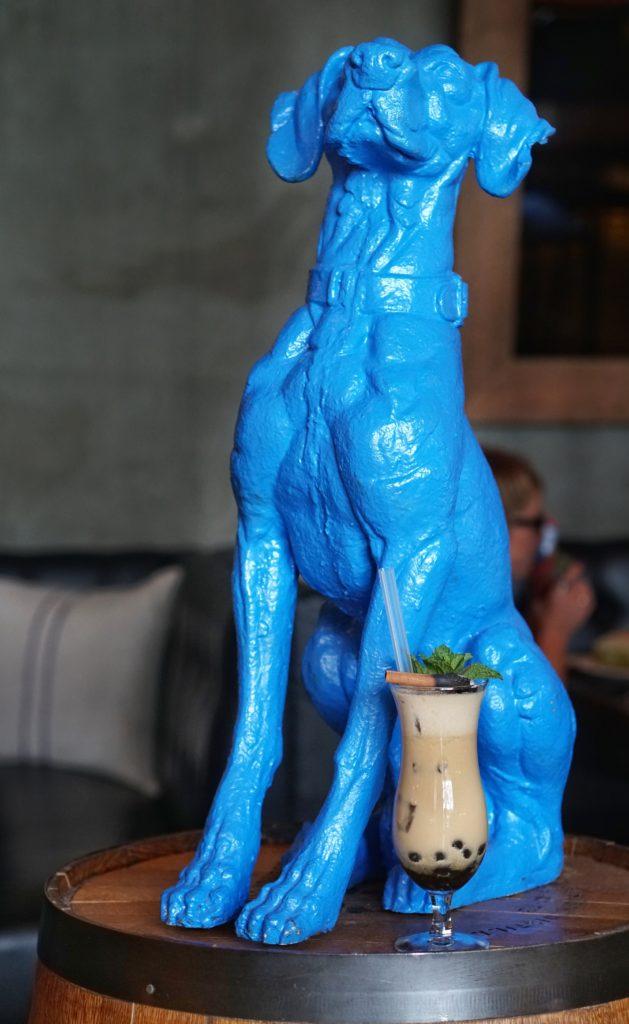 Blue Hound Phoenix dog