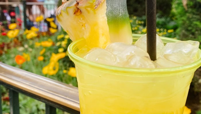 Cocktails, More Than Just Wine at the Disney California Food and Wine Festival